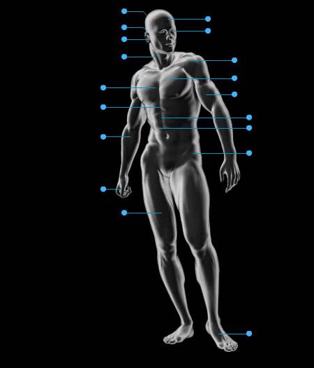 bionic body shop